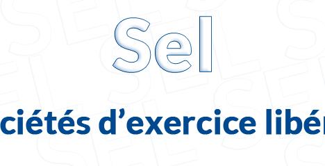 SEL_Societe_exercice_liberal_selarl_selafa_selas_selca_constitution_associes_infos_entreprise_creation